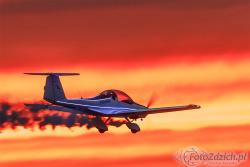 Falcon 2000 1983