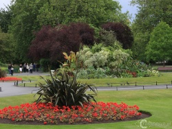 Merrion Square IMG 4455