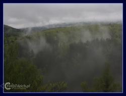 06 Po deszczu w Karkonoszach_may 2010