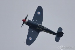 Hawker Sea Fury IMG 4456