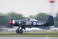 Hawker Sea Fury IMG 4466