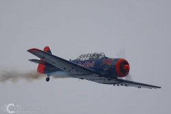 T-6 IMG 4018