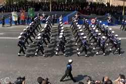 Italian Republic Day 4524