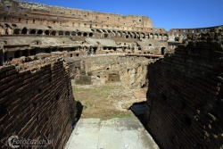 Colosseo 3391