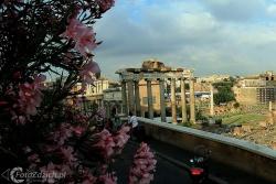 Forum Romanum 2972