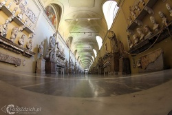 Vatican Museums IMG 2612