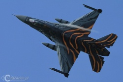 F 16 Tiger paint IMG 6429