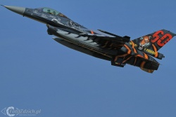 F 16 Tiger paint  IMG 6426