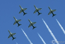 Saudi Hawks IMG 4705