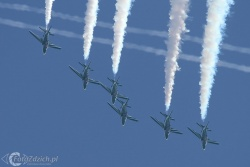 Saudi Hawks IMG 4711