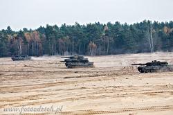 Leopard 5974