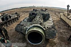 Leopard 6054