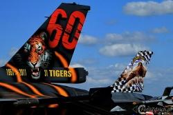F 16 Tiger IMG 8256