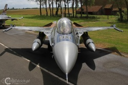 F 16 Tiger paint IMG 7167