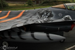 F 16 Tiger paint IMG 7174