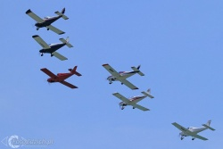Volere Volare 5988