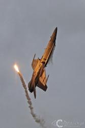 F 18 Hornet 9180