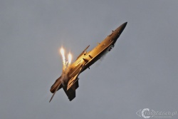F 18 Hornet 9183