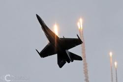 F 18 Hornet 9252