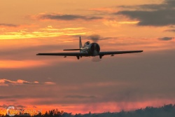 Air Bandits Yak 52 7815