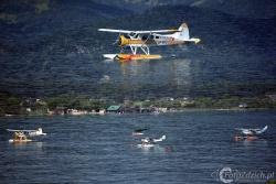 De Havilland Canada DHC 2 2634