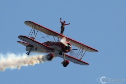 Peggy Krainz Wing Walker 4171