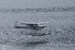 Piper PA 18 Super Cub 1006