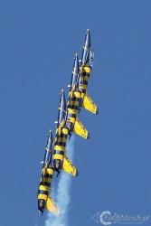 Baltic Bees Aero L 39 Albatro 9126