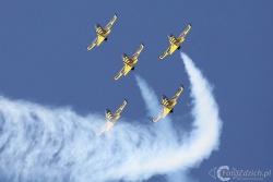 Baltic Bees Aero L 39 Albatro 9145