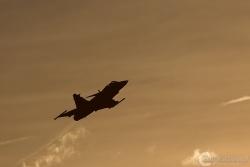 JAS 39C Gripen 3733