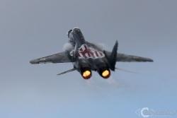 MiG 29A 5320