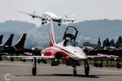 Patrouille Suisse-F 5E Tiger II 0003