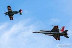 Hornet i Morane C 3801 4981