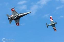 Hornet i Morane C 3801 4996