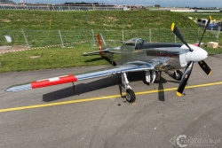 P 51D Mustang 8788