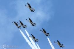 Breitling Jet Team L 39C Albatros 0713