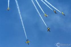 Aero L 39C Albatros Baltic Bees 4435