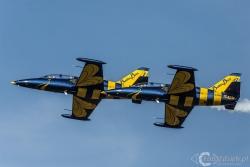 Aero L 39C Albatros Baltic Bees 4500