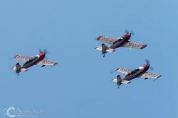 FireBirds 8141