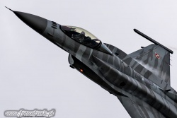 F 16_Tiger Demo Team Poland