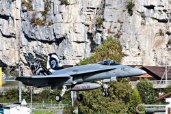 FA-18C Hornet 1008