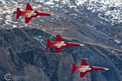 Patrouille de Suisse F-5E TigerII 0684