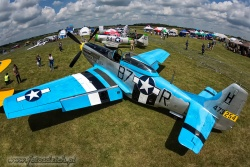 P 51D Mustang 2384