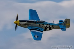 P 51D Mustang 2489