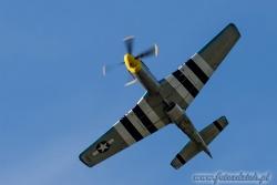 P 51D Mustang 2541