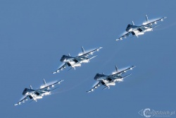 Falcons Of Russia Su 35 0452