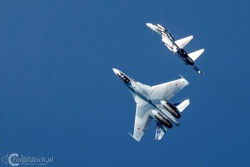 Falcons Of Russia Su 35 3135