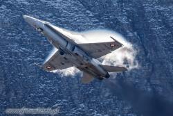 01 F A 18C Hornet 7795