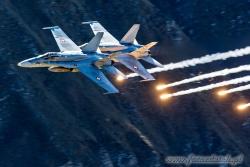 01 F A 18C Hornet 8961