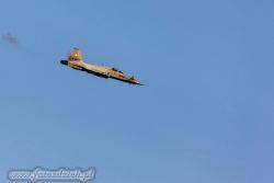 02 Northrop F 5E Tiger II 7131